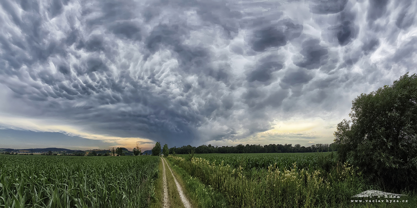 187 - Mammatus cloud